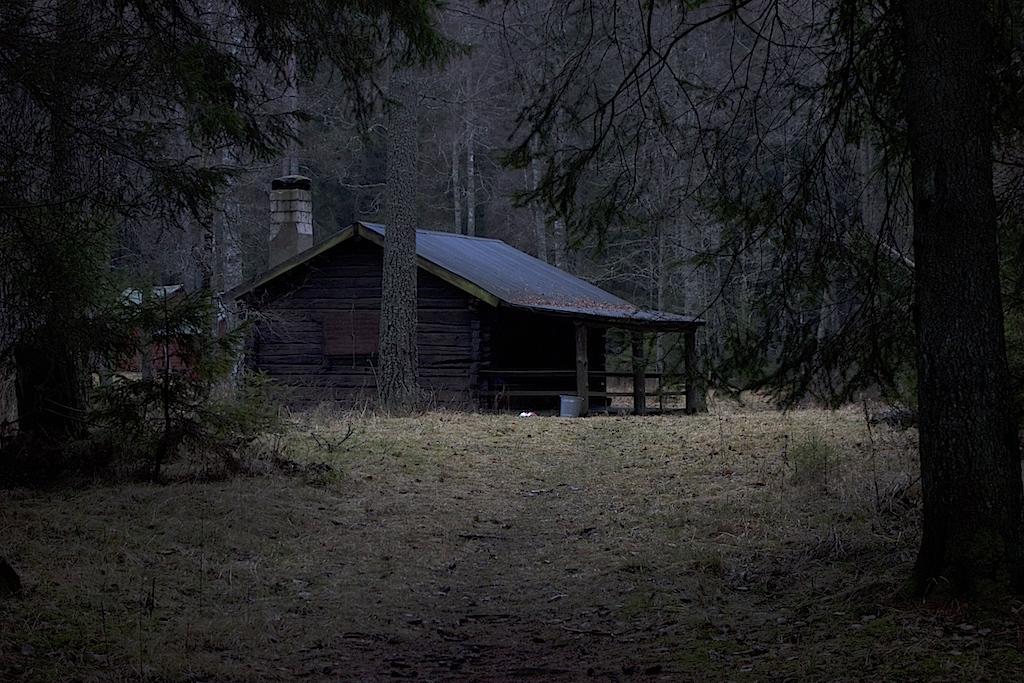 Gammal timmerstuga i mörka skogen