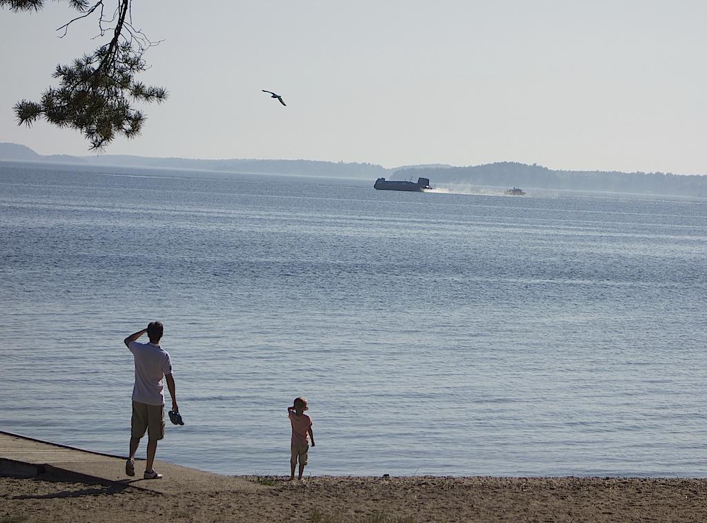 Man och pojke står på strand och ser en svävare