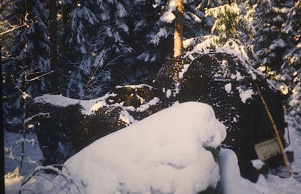 Maskerad bandvagn i vinterskog