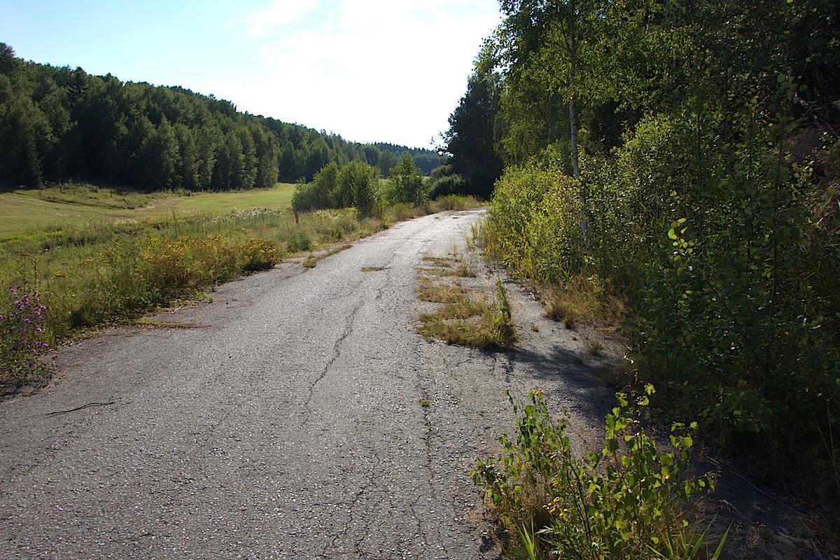 Äldre del av Lissmavägen med en nästan intakt asfalt med några små buskar på.